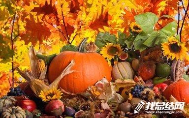 社区文艺演出活动总结_社区感恩节活动总结