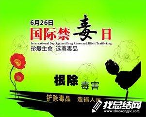 小学开展国际禁毒日宣传活动总结2018