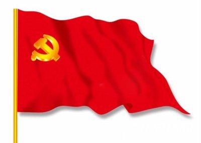 学习《中国共产党支部工作条例》(试行)个人心得体会